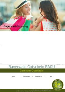 Produktbild zu: BAGU-Shoppingtour